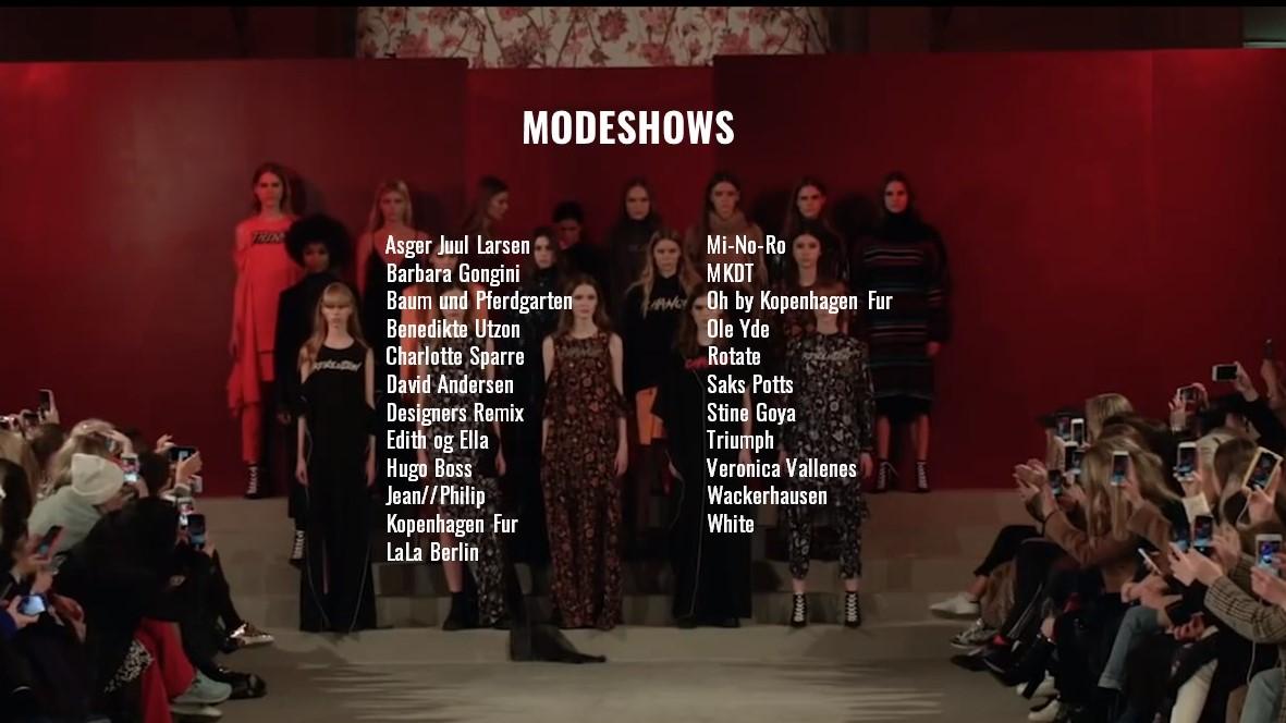 Modeshows Toniah CV