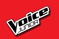 Voice Junior logo